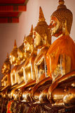 Sitting Buddha statues, Thailand royalty free stock photography