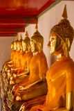 Sitting Buddha statues in Wat Pho Royalty Free Stock Photo