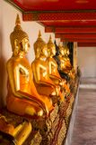 Sitting Buddha statues in Wat Pho Stock Image