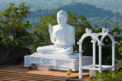 Sitting Budha image Royalty Free Stock Image