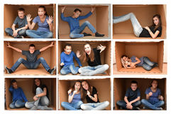Sitting in  a cardboard  box Stock Photos