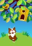 Sitting cat looking at the bird. Vector illustration stock illustration