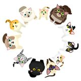 Sitting cats looking circle. Sitting cats looking up in circle, with colors royalty free illustration