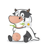Sitting cow eating daisy. Clipart picture of a sitting cow cartoon character eating daisy stock illustration