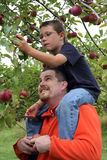 Sitting on Dad's shoulders Royalty Free Stock Image