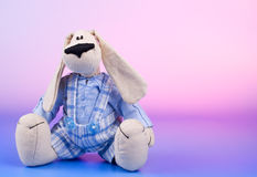 Sitting dog toy Stock Photos