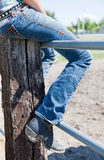 Sitting on a Fence royalty free stock photography