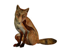Sitting fox Stock Images