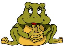 Sitting Frog Binky Stock Images