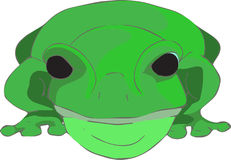 Sitting Frog. Original, hand drawn frog looking directly at you and giving you his full attention Stock Image