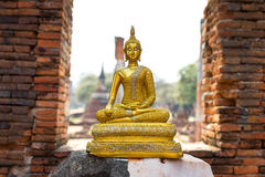 Sitting golden buddha statue in old ruined temple Stock Photography