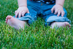 Sitting in grass. A baby's feet, jeans, and hands sitting in grass Royalty Free Stock Photo