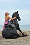 Sitting horse on the beach Stock Photography