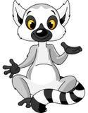 Sitting lemur explain Stock Photo