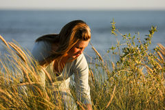 Sitting in the long grass Royalty Free Stock Photos
