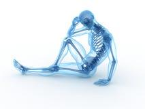 Sitting male skeleton Royalty Free Stock Photos