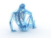 Sitting male skeleton Stock Image