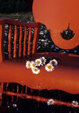 Sitting outside. Flowers sit quietly on this chair outside Royalty Free Stock Photo