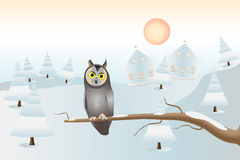 A sitting owl: Christmas card Royalty Free Stock Photo