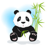 Sitting panda with green bamboo, vector Royalty Free Stock Images