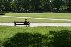Sitting in the park Royalty Free Stock Image