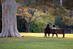 Sitting in the park royalty free stock photography