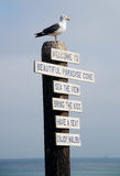 Sitting on the Pole. Seagul in Malibu enjoying a rest on a pole welcoming everyone to Paradise Cove Royalty Free Stock Photos