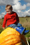 Sitting on a Pumpkin Royalty Free Stock Images