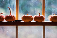 Sitting pumpkins. Five small pumpkins sitting on a window frame Royalty Free Stock Images