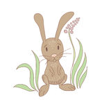 Sitting Rabbit. Cartoon rabbit sitting into the grass illustration. Vector eps10 Stock Images