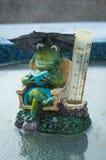 Sitting in Rain. Wonderful frog rain gauge ornament in the rain Royalty Free Stock Image