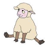 Sitting sheep Stock Image