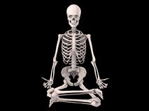 Sitting skeleton Stock Image