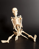 Sitting skeleton Stock Images