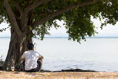 Sitting under a tree Lake. Royalty Free Stock Image