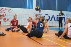 Sitting volleyball Royalty Free Stock Photos