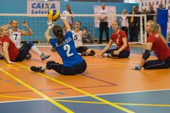 Sitting volleyball Stock Photography