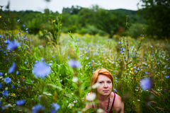 Sitting in wildflowers field Stock Photos