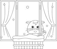Сat sitting on the window and watching to the snow. Coloring bo. Ok. Vector illustration Royalty Free Stock Photography
