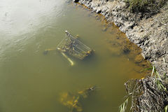 Sittvagn i vattnet Royaltyfria Bilder