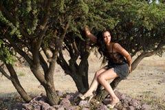 Situação modelo em uma árvore Fotografia de Stock Royalty Free