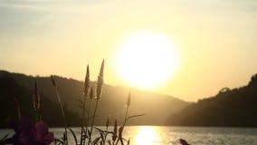 Situa la vista del tramonto video d archivio