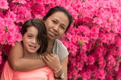 Situación de la madre y de la hija delante de las flores rosadas de la azalea en camiseta el día de aguas termales fotografía de archivo