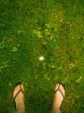 Situaci?n de la mujer sobre el huevo del p?jaro foto de archivo