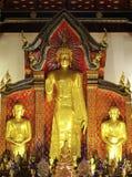 Situación de oro de Buddha Imagen de archivo libre de regalías