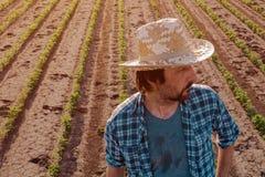 Situación del granjero en el campo cultivado de la soja, opinión de alto ángulo imagen de archivo
