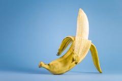 Situación del plátano Foto de archivo