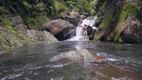 Situación desnuda del hombre con las manos aumentadas en la cascada rocosa en el hombre feliz de la selva tropical tropical que e almacen de video