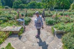 Situación en el medio de una escalera circular, jardín de Bodnant, País de Gales de la mujer imagen de archivo