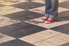 Situación femenina adolescente joven en la calle Fotografía de archivo libre de regalías